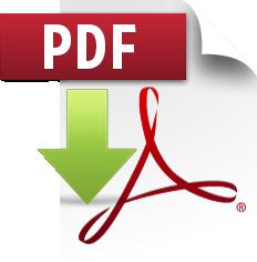 pdf-icon2